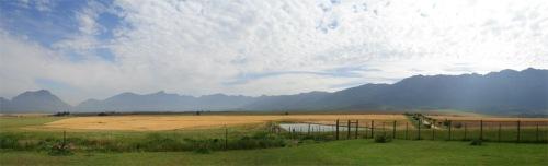 Tulbach View