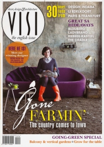 Visi 2010 Winter Cover