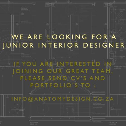 Junior Designer
